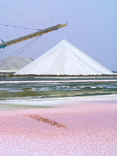 The-Salins-du-Midi-salt-works-Aigues-Mortes