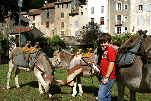 hiking-with-a-donkey-in-Cevennes